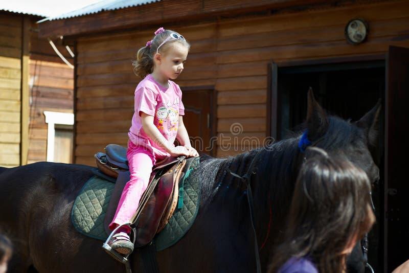 barnhästryggridning royaltyfri bild