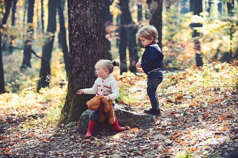 Barnlek i vänner för för höstskogpys som och flicka campar i trän Syskongruppen har gyckel på ny luft arkivbilder