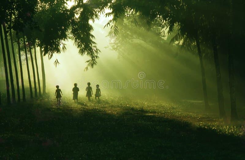 barnmorgon arkivbild