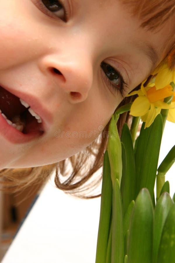 barnpåskliljar royaltyfria bilder