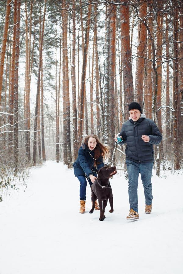 Barnpar med en hund som har gyckel i vinter arkivfoto