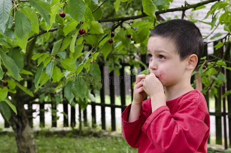 Barnplockning och ätakörsbär arkivbild