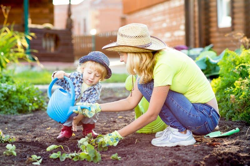 Barnpojken hjälper att fostra arbete i trädgården arkivfoton