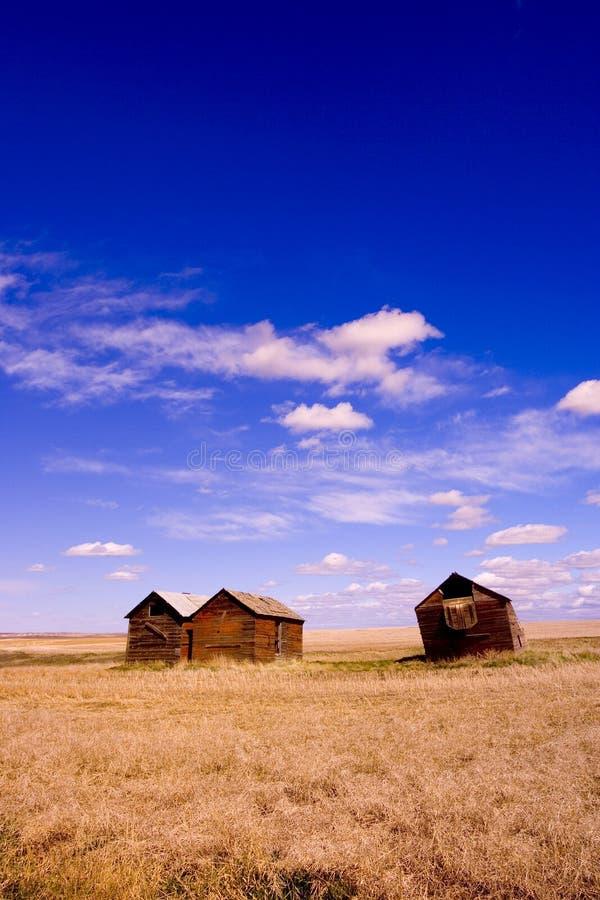 Barns 1 royalty free stock images
