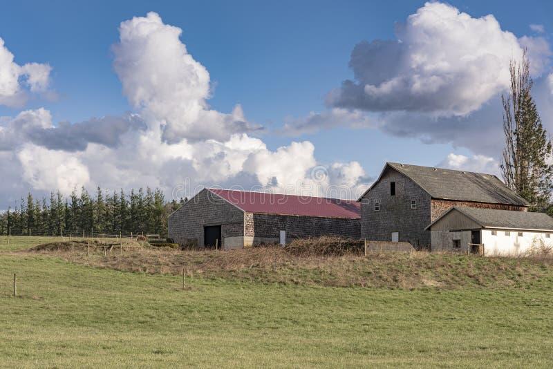 Three barns and field in rural Oregon. Barns and farmland field rural Oregon royalty free stock images