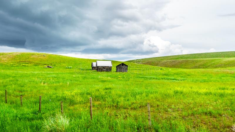 Barns in the Grass Lands of the Nicola Valley in British Columbia, Canada. Tin Roofed Barns in the wide open Grass Lands of the Nicola Valley, along Highway 5A royalty free stock image