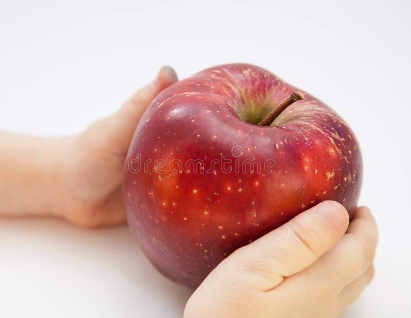 Barns händer som rymmer ett stort rött äpple royaltyfri foto