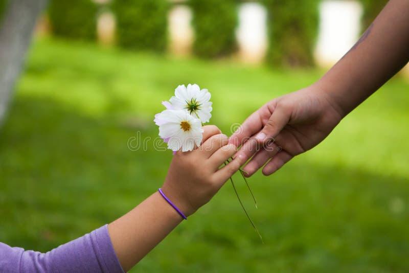 Barns hand som ger blommor till hennes vän arkivbilder