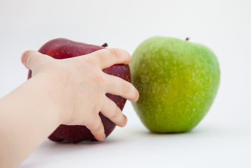 Barns hand som rymmer ett moget äpple arkivfoto