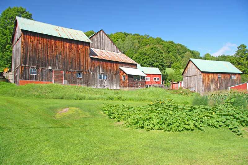 Barns near Pomfret Vermont stock photo