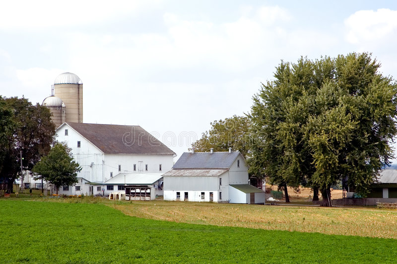 Barns and silos on farm. A view of several barns and buildings on a rural farm in Amish country near Lancaster, Pennsylvania, (USA stock image