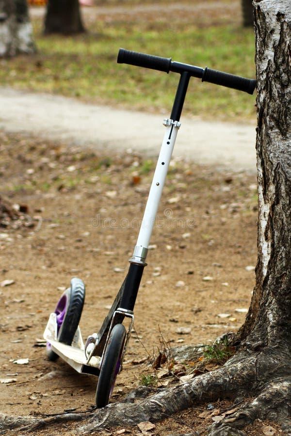 Barns sparkcykel på våren på gatan royaltyfria bilder