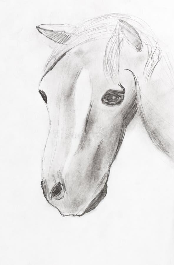 Barns teckning - hästhuvud stock illustrationer