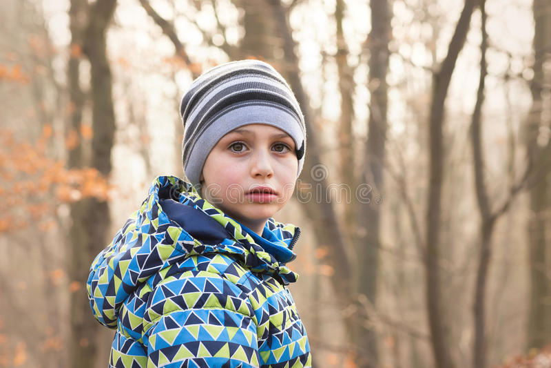 Barnstående i skog royaltyfri fotografi