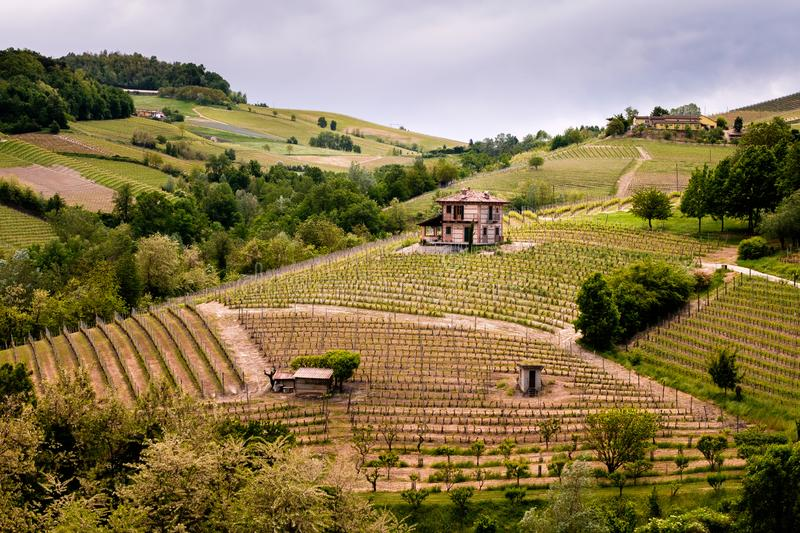 Barolo Langhe and Roero vineyards hills. Springtime landscape, Nebbiolo, Dolcetto, Barbaresco red wine. Viticulture in Piedmont, stock photo