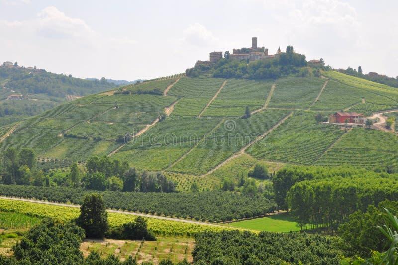 Barolo Wein alba Piedmont Italien lizenzfreies stockbild