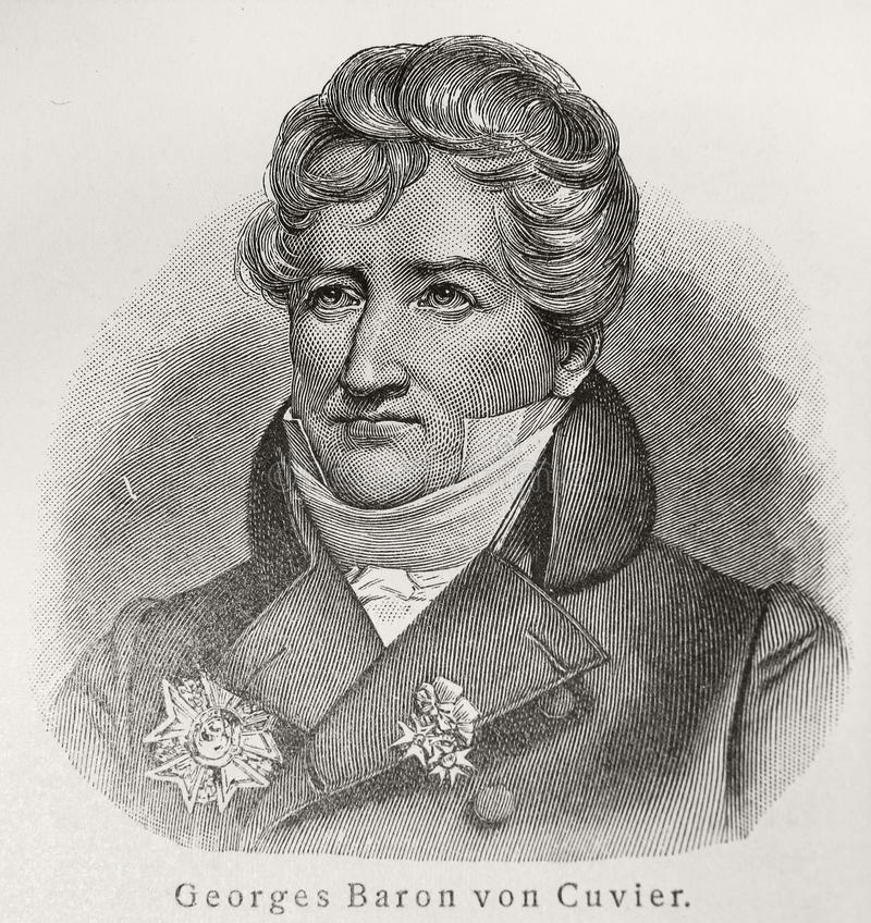 Baron Georges Cuvier photo libre de droits