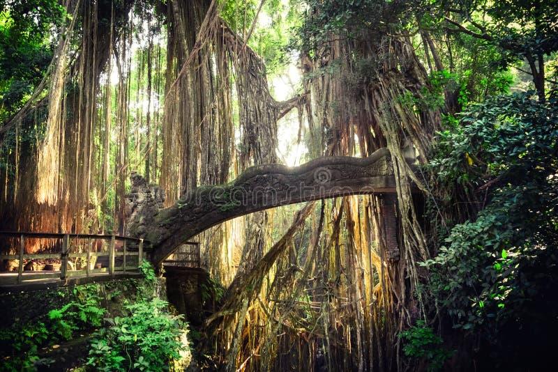 Barong在猴子森林巴厘岛,印度尼西亚的狮子桥梁 免版税库存图片