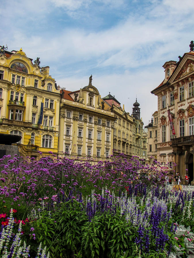 Baroque buildings in Prague Old Town Square. Summer view of Baroque buildings in Prague Old Town Square with flowers in the foreground royalty free stock photo