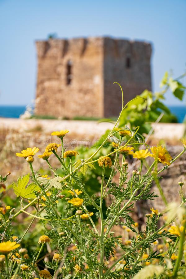 Baroque watchtower, beautiful old tower in San Vito, Polignano a Mare, Bari, Puglia, Italy with with blue sea. Stone wall and flowers, Mediterranean landscape royalty free stock image