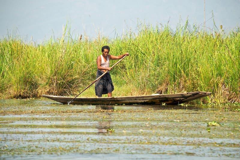 Barquero Burmese fotografía de archivo