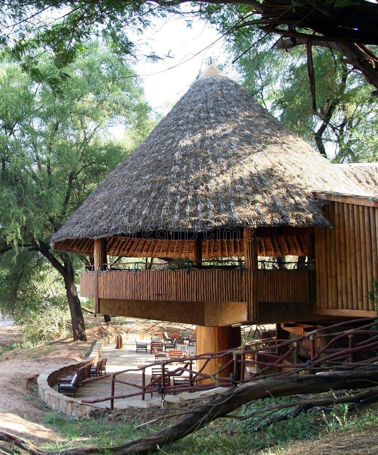 Barra africana in una località di soggiorno di safari immagine stock libera da diritti
