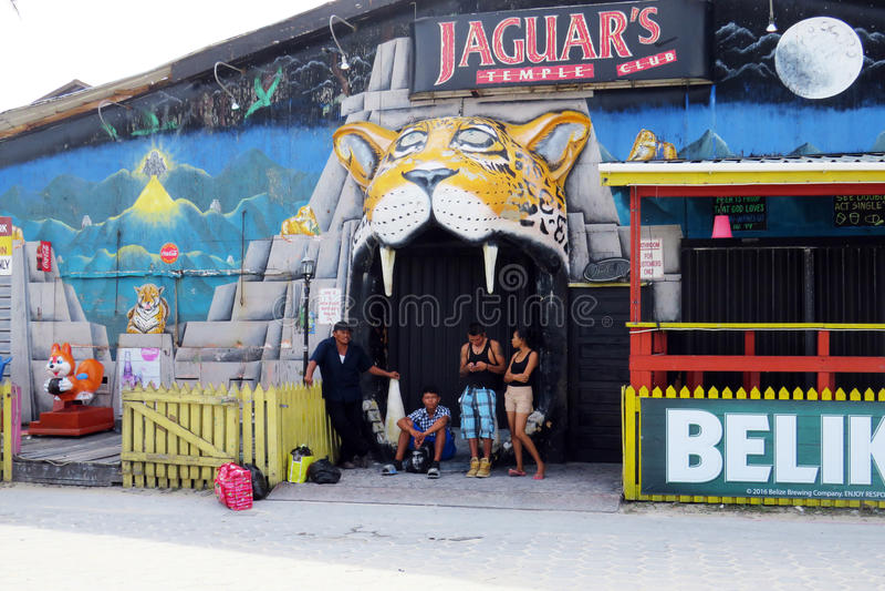 Barra de Jaguar imágenes de archivo libres de regalías