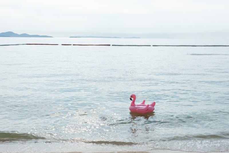 Barra della spiaggia con i frutti tropicali Il migliore momento a Pattaya, la Tailandia fotografie stock libere da diritti