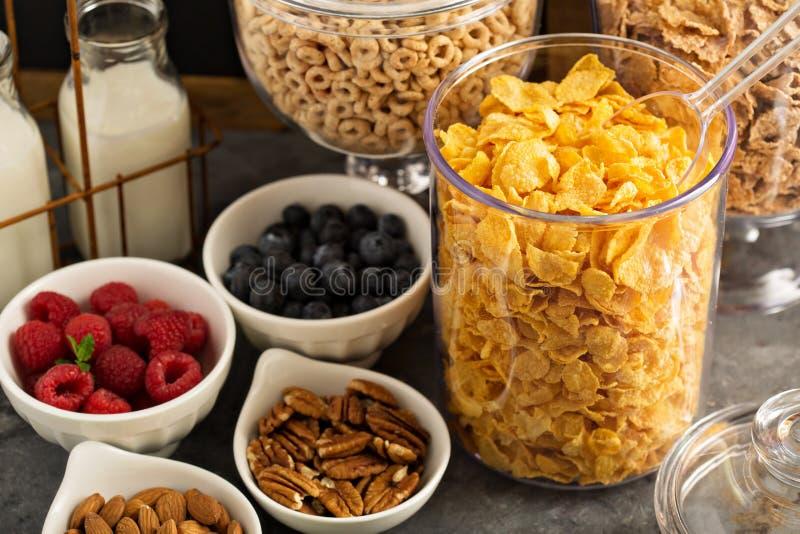 Barra o comida fría del cereal con los copos de maíz, la fruta y las nueces imágenes de archivo libres de regalías