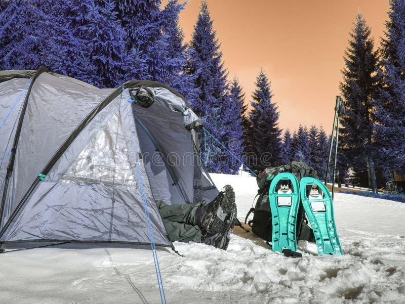 Barraca leve do turista entre a neve e as árvores Junte-se à cruz do inverno fotografia de stock royalty free