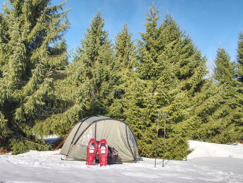 Barraca leve do turista entre a neve e as árvores Junte-se à cruz do inverno imagem de stock
