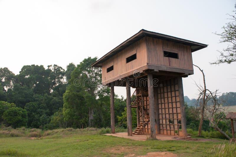 Barraca para observar o parque da reserva natural dos animais, nacional de Khao Yai imagens de stock royalty free