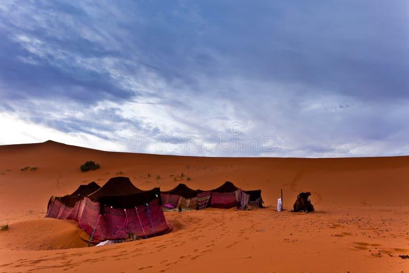 Barracas beduínas no deserto de Sahara imagens de stock