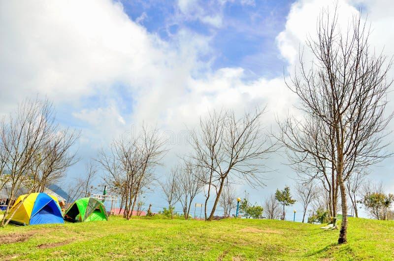 Barracas de acampamento com a árvore seca do ramo imagem de stock