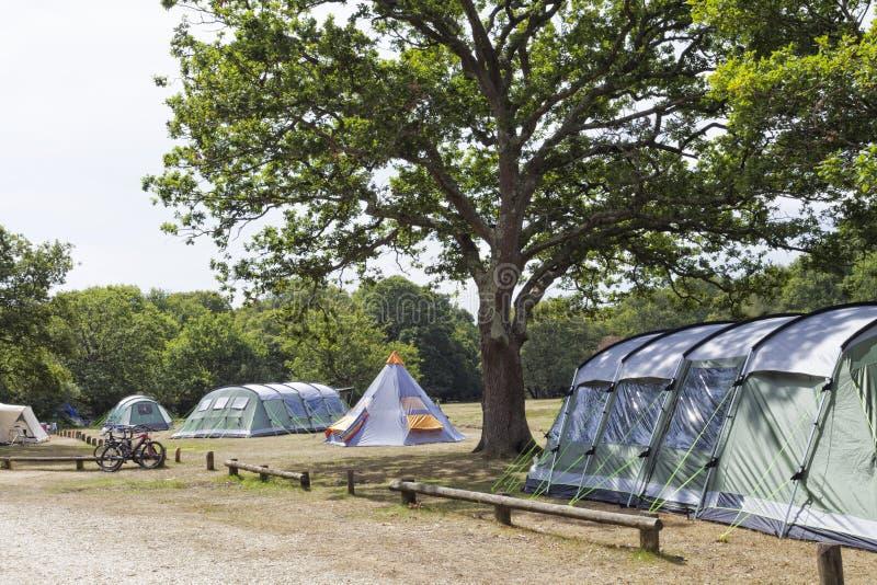 Barracas de acampamento da família nas florestas fotos de stock