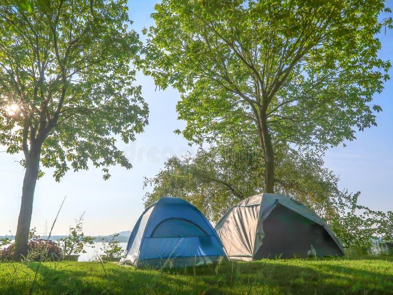 Barracas de acampamento na grama em uma manhã imagem de stock