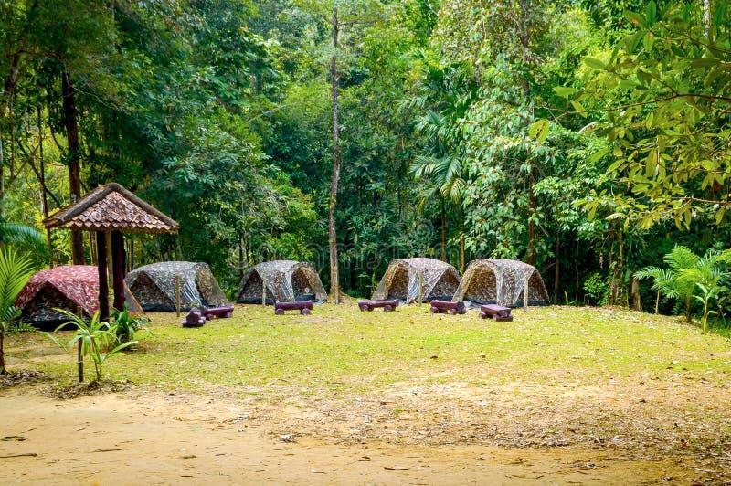 Barracas do turista da camuflagem na floresta no acampamento fotografia de stock royalty free