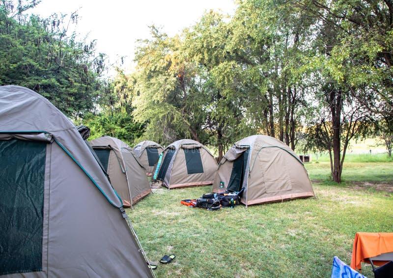 Barracas em um local de acampamento no delta de Okavango em Botswana imagem de stock