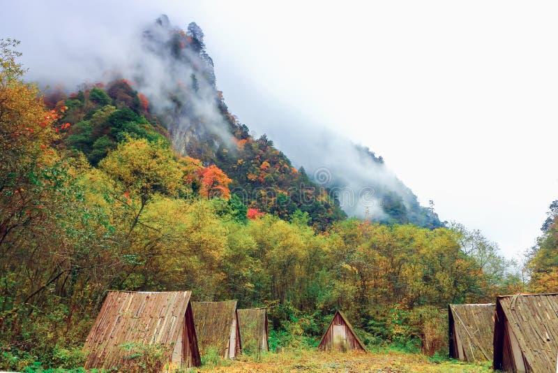 Barracas no vale com plantas coloridas fotografia de stock