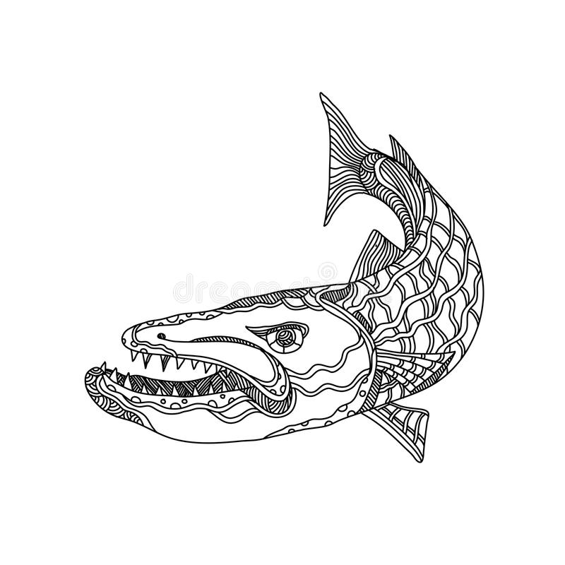 Barracuda ryba Doodle sztuka ilustracja wektor