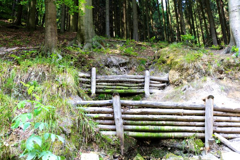 Barrage dans une forêt image stock