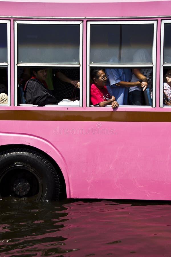 Barramento e passageiro públicos na inundação fotografia de stock royalty free