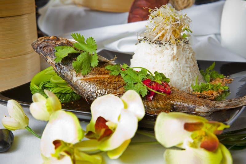 Barramundi australiano, servito con il riso del gelsomino immagini stock