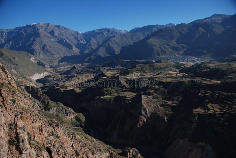 Barranca de Colca de Perú fotografía de archivo libre de regalías