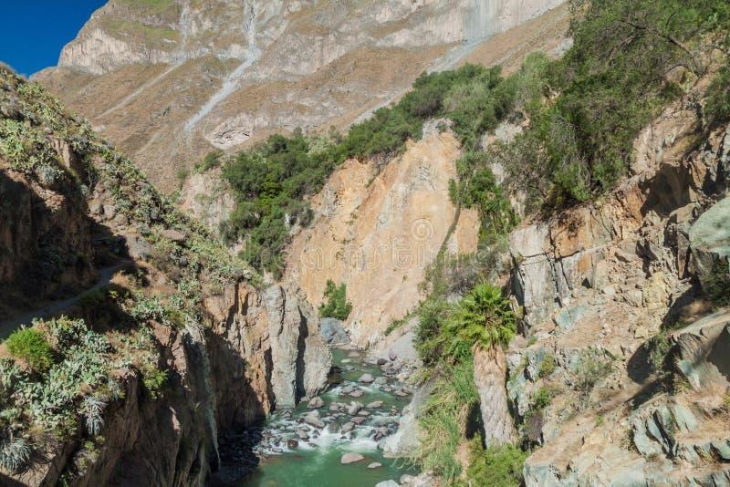 Barranca de Colca, Perú imagen de archivo