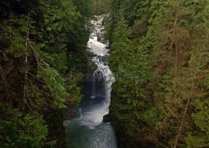 Barranca de Lynn, Vancouver, Canadá imagen de archivo libre de regalías