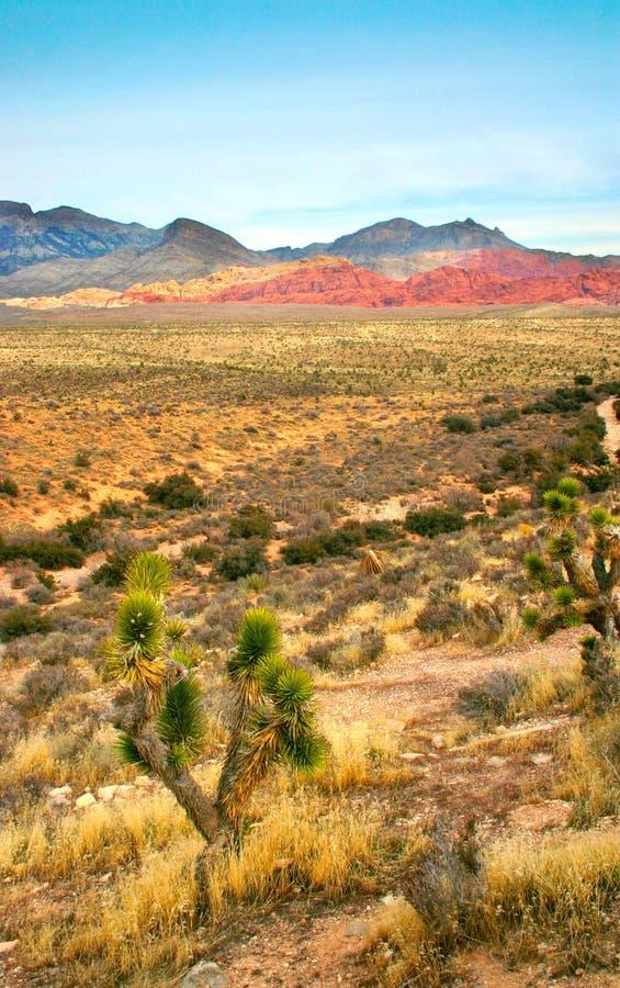 Barranca roja de la roca, Nevada imagenes de archivo