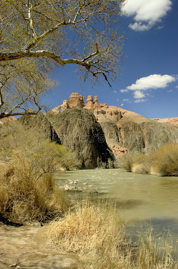 Barranca y río imagen de archivo libre de regalías