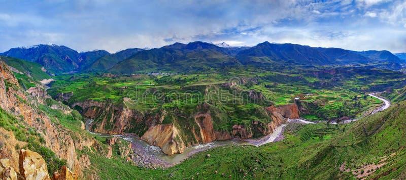 Barranco Colca, Perú foto de archivo