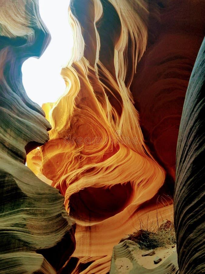 Barranco de exploraci?n Arizona los E.E.U.U. del ant?lope imagen de archivo libre de regalías